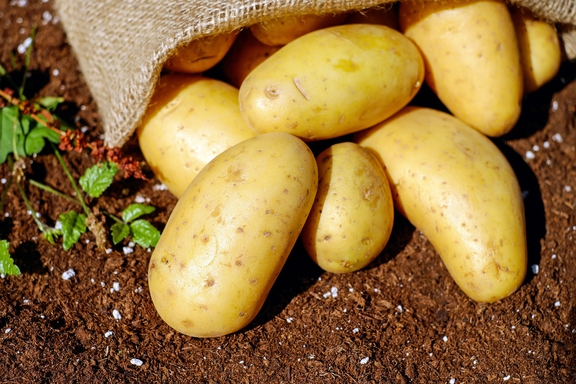 potatoes-1585075_1920.jpg